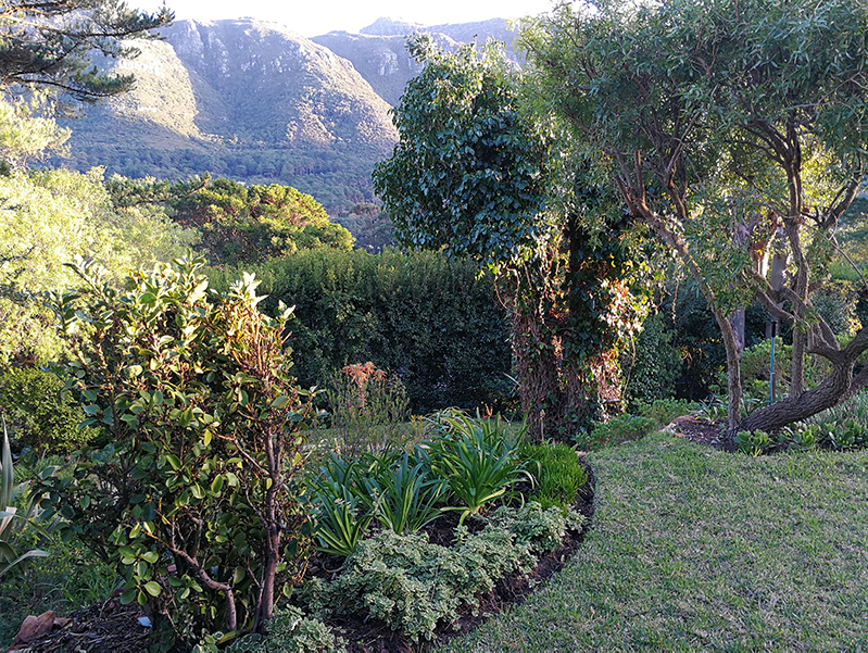 Garden with Mountainous backdrop